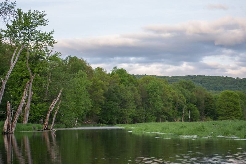 2018-05-20 Kayaking - Wallkill River-untitled (22 of 64)-007.jpg