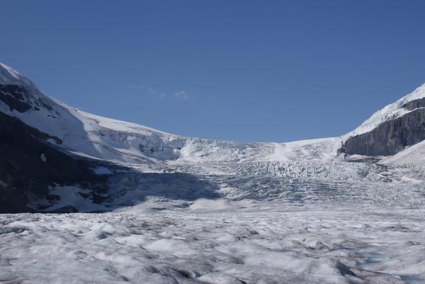 Ice Explorer y Skywalk (Explorador del Hielo y Paseo por el Cielo)