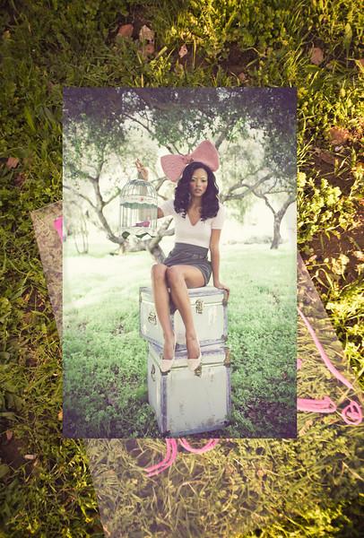bigbowandgrass.jpg