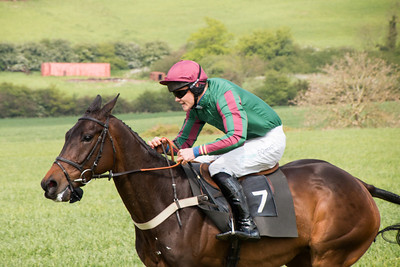 Fernie Point to Point - May 4 2014