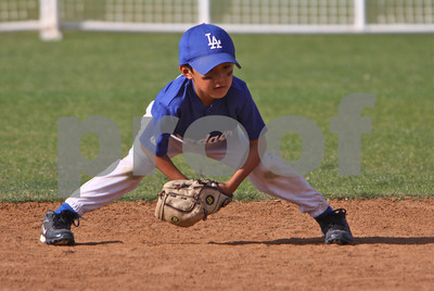 PPBA Dodgers vs Yankees Championship Game