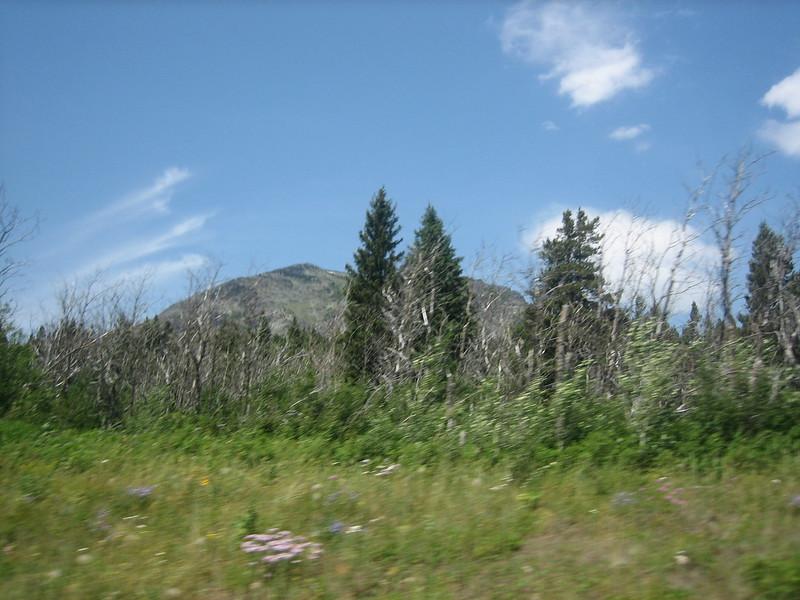 2008-07-24-YOCAMA-Montana_2592.jpg