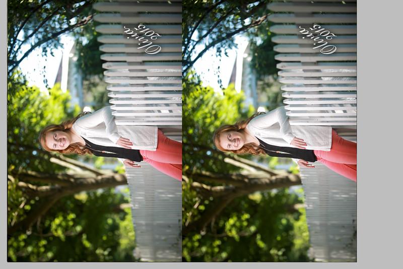 olivia wallet 0216.jpg