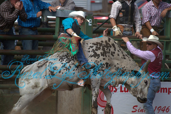 A Lot of Bull 2012 Ketchum Kalf Rodeo