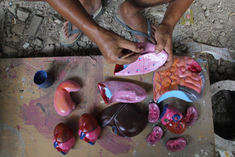 . A craftsman paintis props human organs on April 23, 2014 in Depok, West Java, Indonesia. The mannequins are made from fiberglass and will be used in schools, hospitals and laboratories.  (Photo by Nurcholis Anhari Lubis/Getty Images)