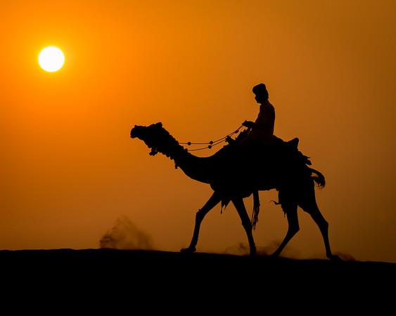 India 2013 - Travelogue