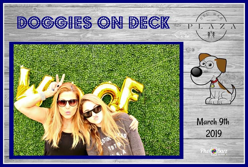 Doggys on Deck14.jpg