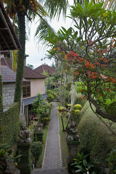 Alley in Ubud