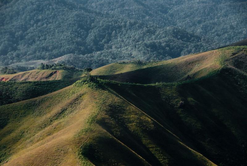 Conservation-13.jpg