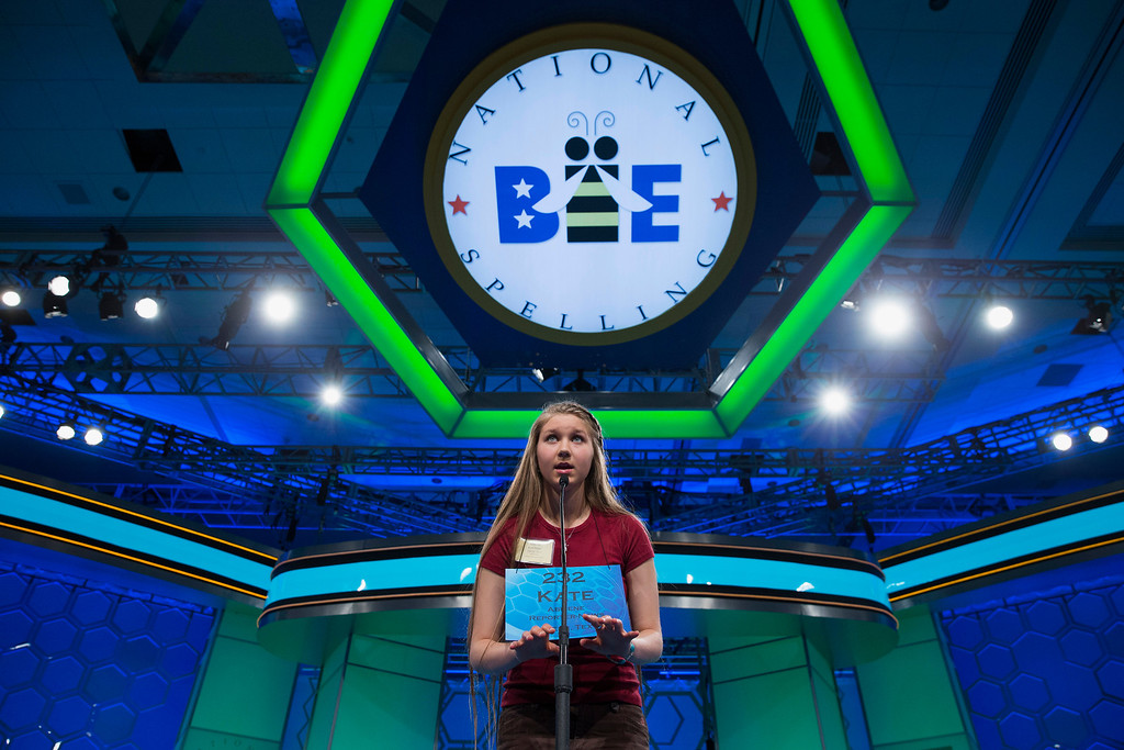 ". Kate Miller of Abilene, Texas, spells the the word ""brachypterous\"" correctly during the semifinal round of the National Spelling Bee, Thursday, May 29, 2014, in Oxon Hill, Md. (AP Photo/ Evan Vucci)"