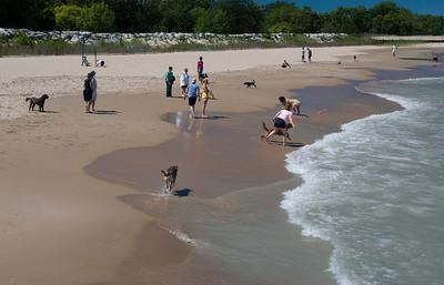 Evanston Dog Beach