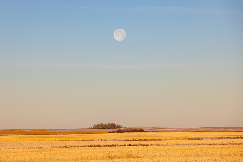 Prairie Moon Set