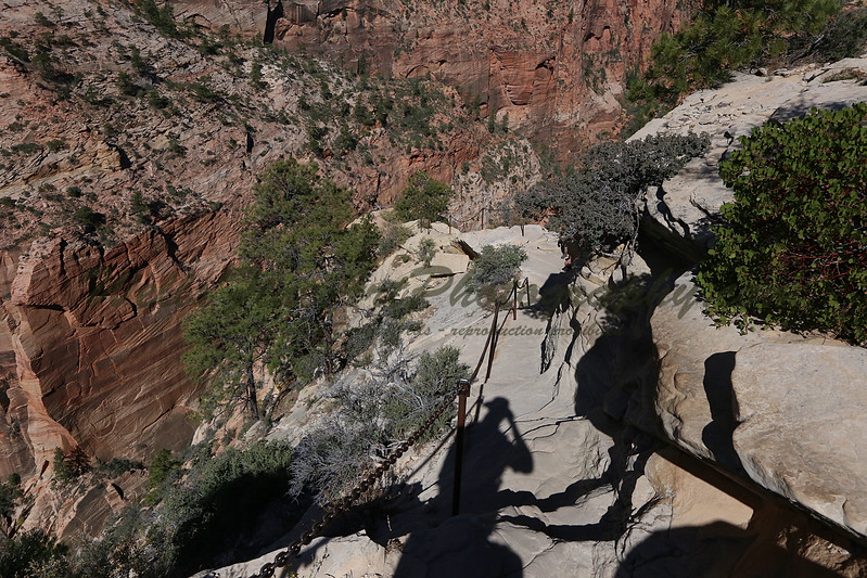 Trail down Angel's Landing.jpg