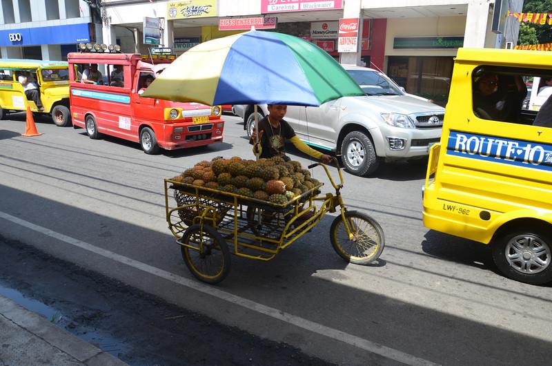 DSC_7606-pineapple-bike.JPG
