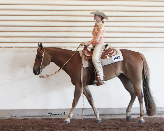 Amateur Western Horsemanship