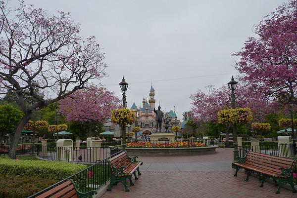 2012 March Disney Trip