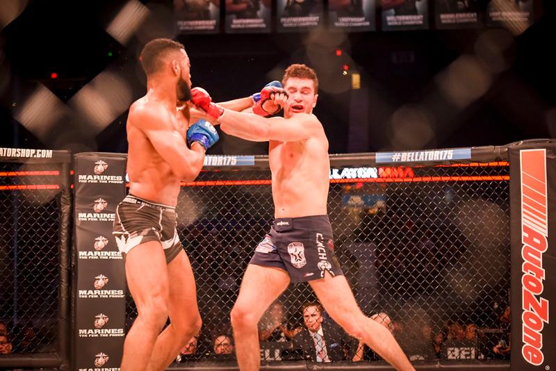 2017-03-31 Bellator MMA 175