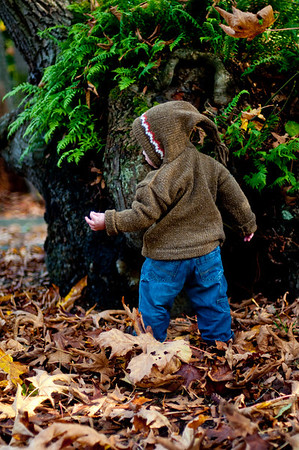 Fall Photos of Kaden!!!!!