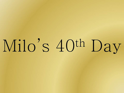 Milo's 40th Day