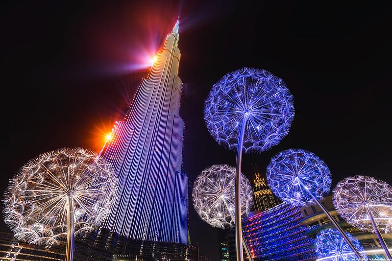 Dubai-IMG_0058-web.jpg