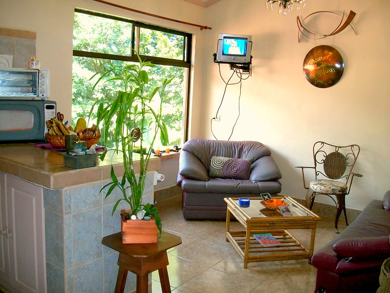 LivingroomFromDoor-L.jpg