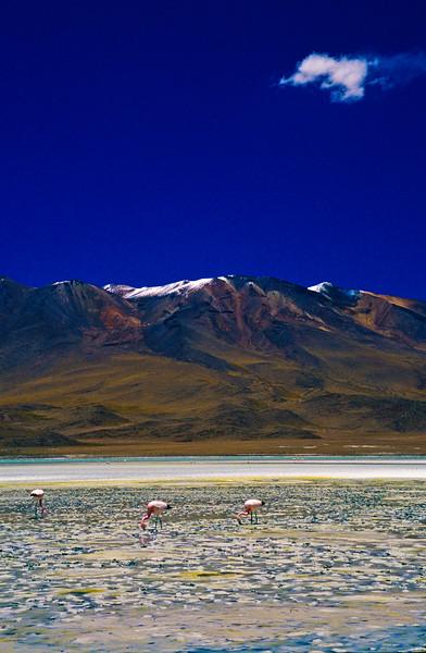 Bolivia-54.jpg