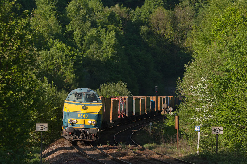 The area west of the Gemmenich tunnel could be a true wilderness at times. Here 5540 leads an intermodal up from Aachen in sweet evening light. That's the west-most German signal in the distance. The signs denote a mandatory brake test for eastbound trains.