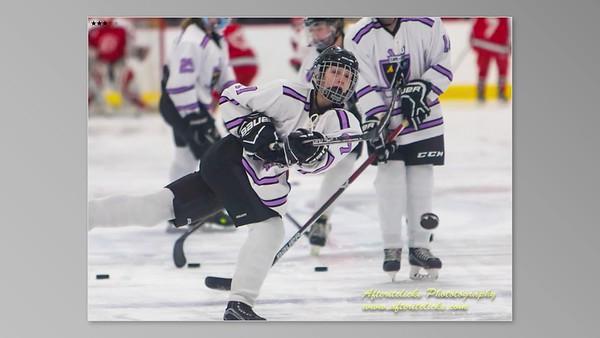Furies Girls Hockey VodeoSlideshow 2018-2019