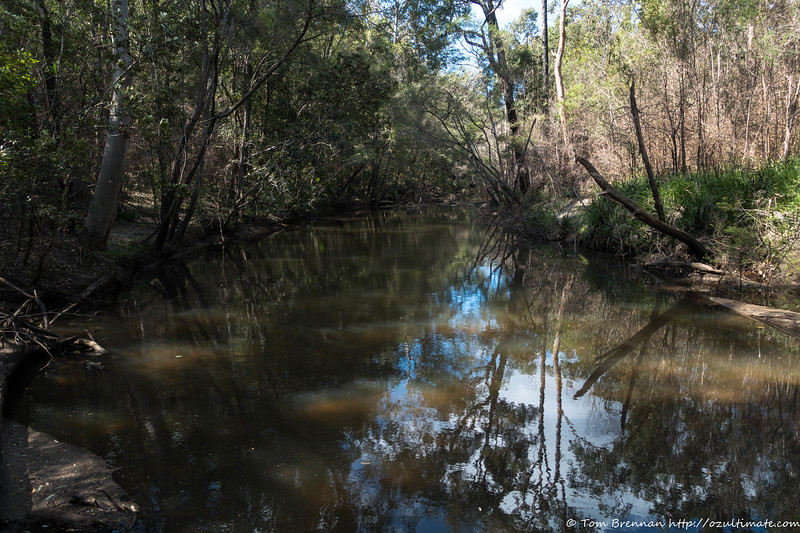 The upper section of Angorawa Creek is very flat
