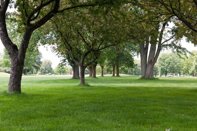 20130623 ABVM Golf Outing-9526.jpg