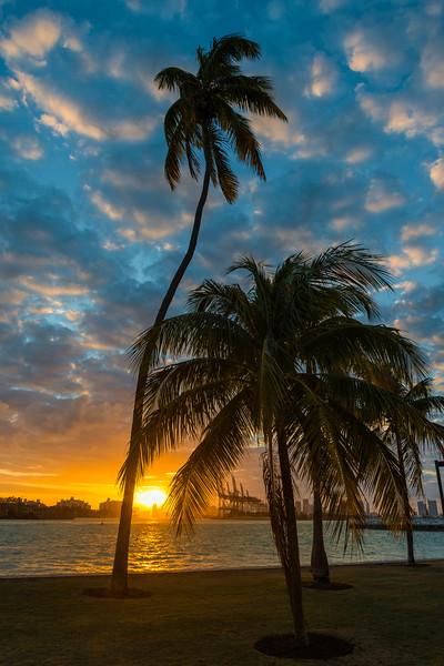 Miami-25.jpg