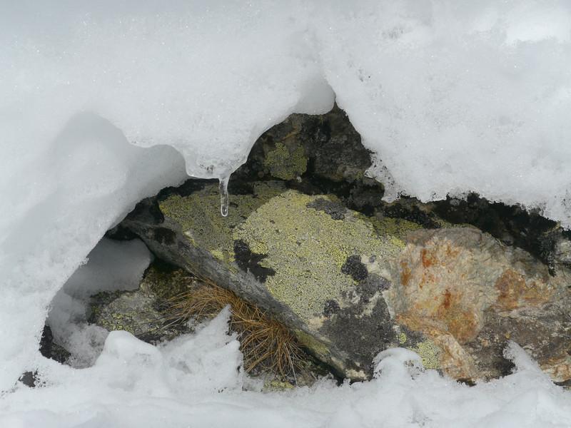 @RobAng 2013 / Muotas Muragl, Samedan/St. Moritz, Kanton Graubünden, CHE, Schweiz, 2450 m ü/M, 2013/02/16 14:24:44