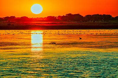 Quivaria Sunset 9/2021