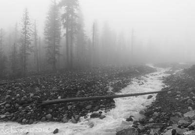 Carbon River 20180520
