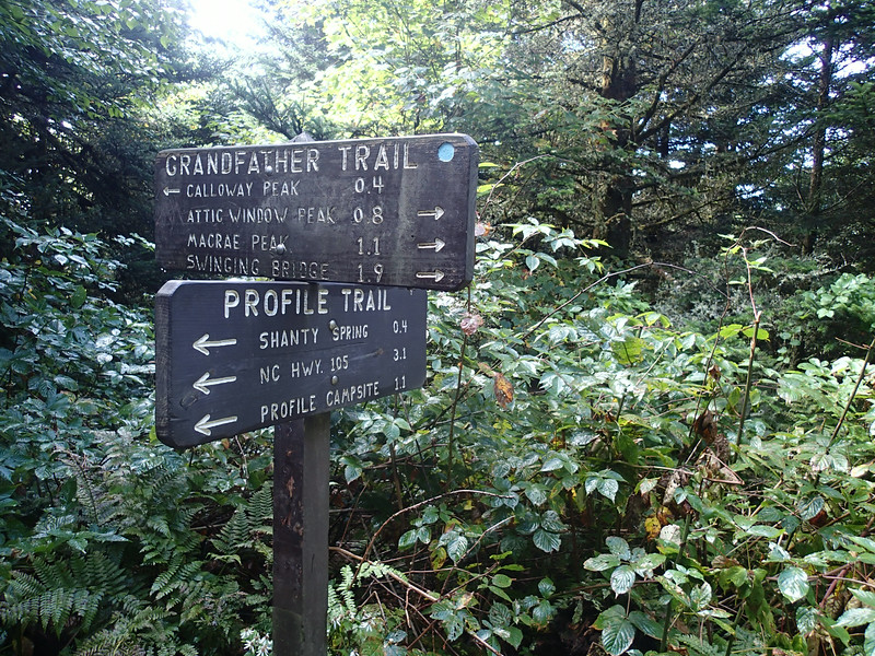 Grandfather Mountain - Grandfather Trail