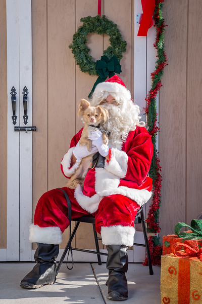 Pet Pictures With Santa-68.jpg