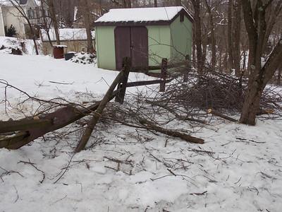 Ice Storm  5 FEB 2014