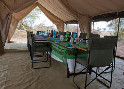 Amboseli, Kenya, Ker Downey Camp