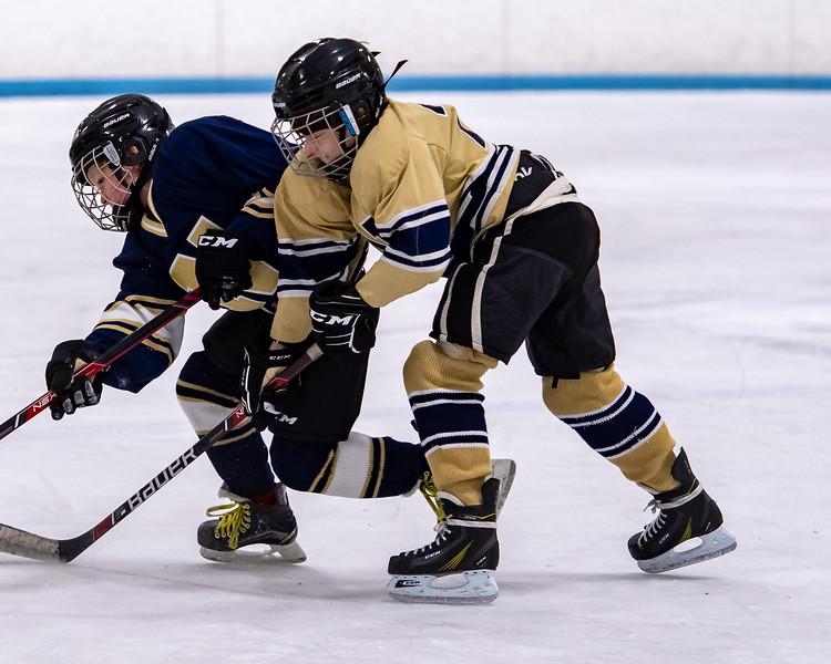 2019-Squirt Hockey-Tournament-249.jpg