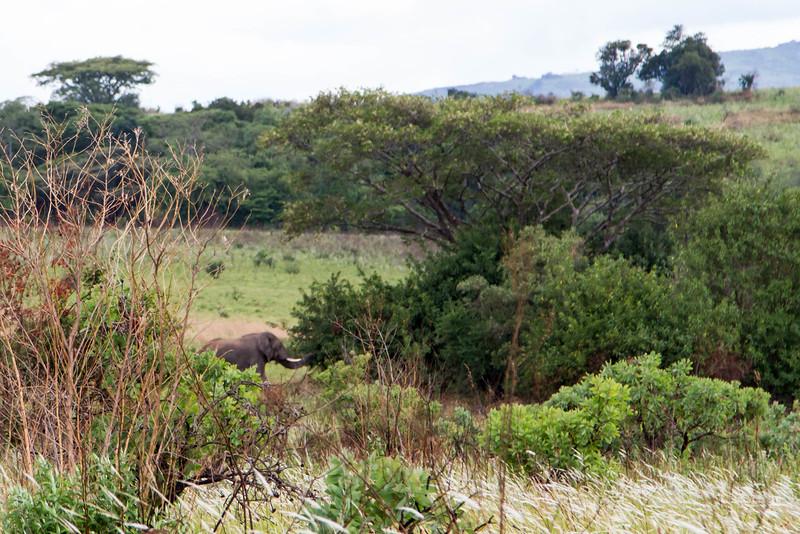Malawi-132.jpg