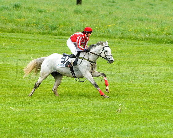 Middleburg Hunt Point to Point 5-1-16