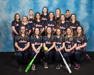 Kane Area High School Softball 2017