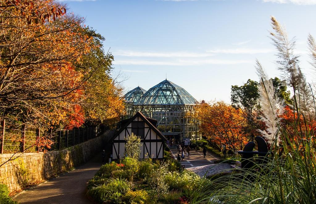 Autumn in the Nunobiki Herb Gardens. Editorial credit: Visun Khankasem / Shutterstock.com