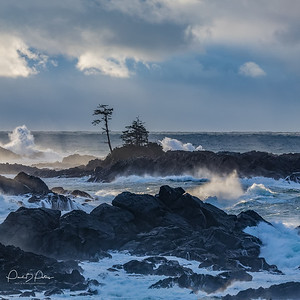 Black_Rock_Resort, Ucluelet, BC (Jan 2018 )