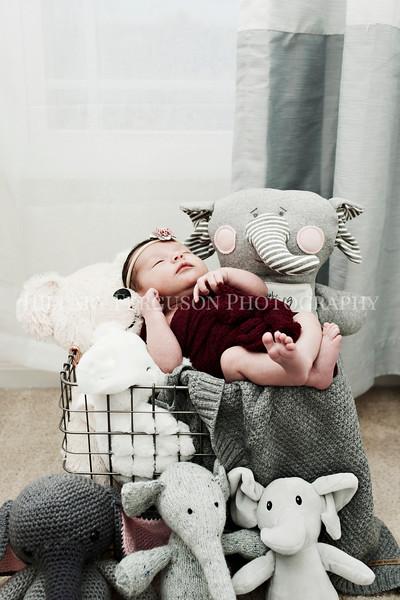 Hillary_Ferguson_Photography_Carlynn_Newborn041.jpg