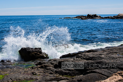 Bass Rocks