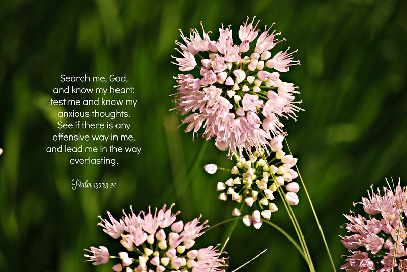 19_Psalm139-23-24_BS_2013-7-6.jpg