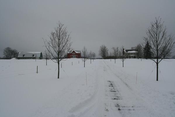 Lukeobel Farm