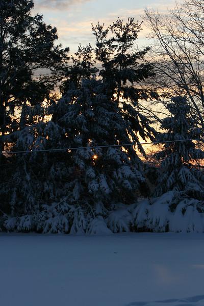 snow 2010 feb IMG_2387 (5).JPG