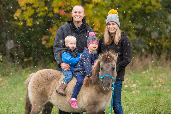 Torning Family- Equine